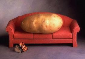 couch_potato_204705